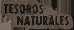 Tienda online fósiles, minerales, meteoritos - Tesoros Naturales